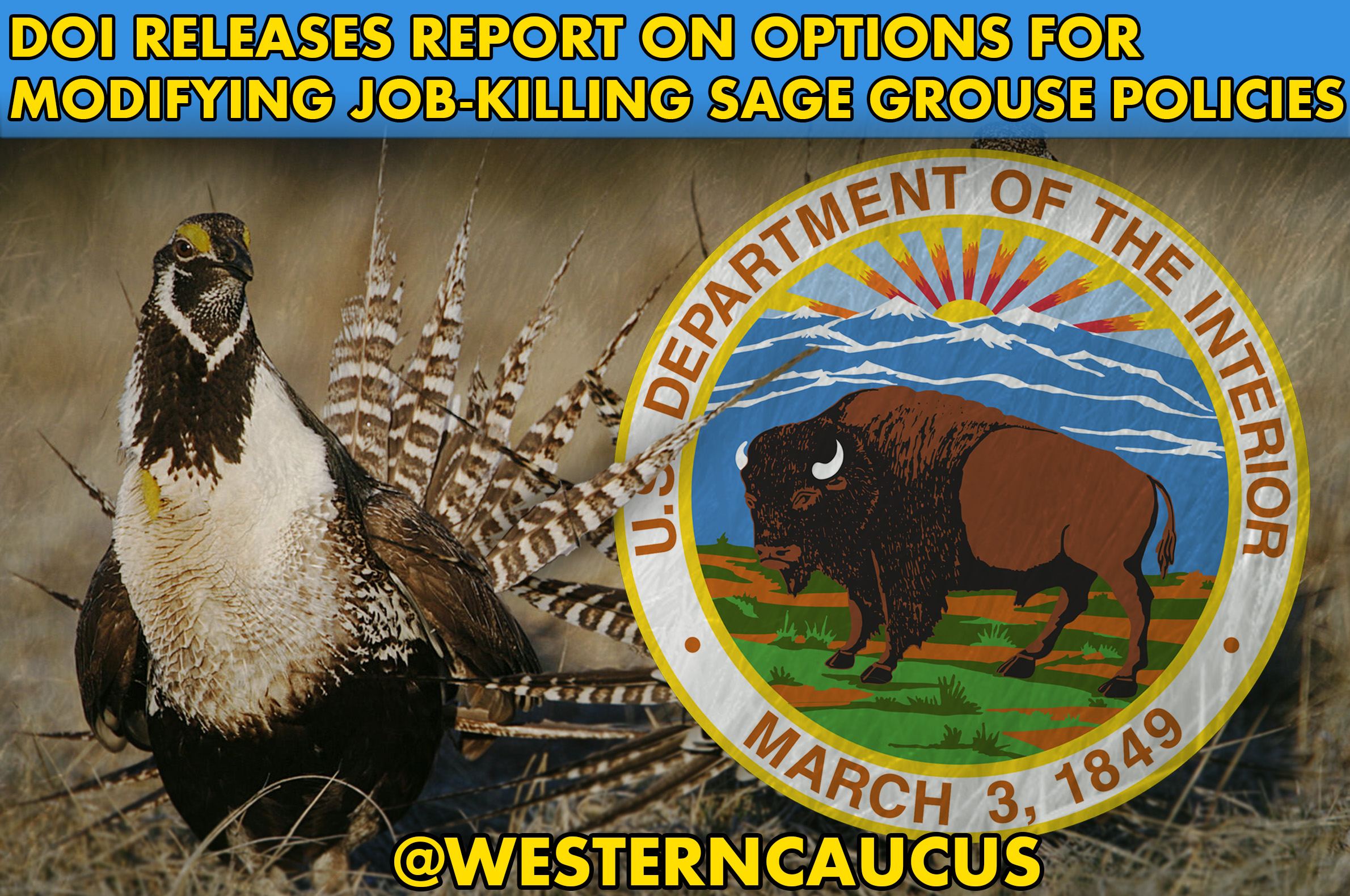 Western Caucus Members Applaud DOI Sage Grouse Report